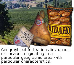 Geographical Indications link goods or services originating in a particular geographic area with particular characteristics