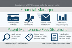 Financial Manager Patent Maintenance Fees storefront infographic