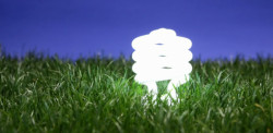 Fluorescent light bulb lit up on the grass