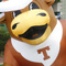 Photo of Texas Longhorn and Michigan State Sparty mascot inflatables.