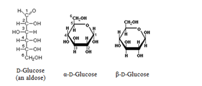 What is the definition of glucose?